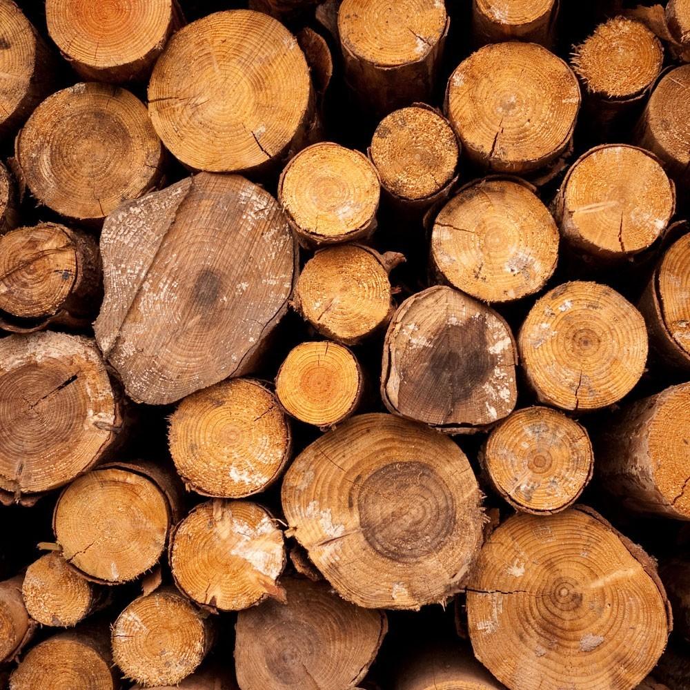 chaudière à bois - bûches de bois